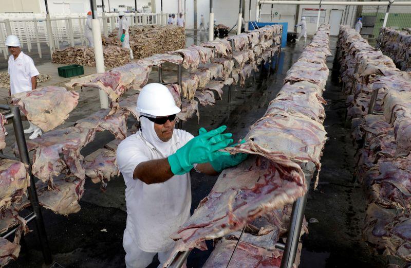 Exportação de carne bovina do Brasil fecha semestre em queda; Abiec vê entrave logístico