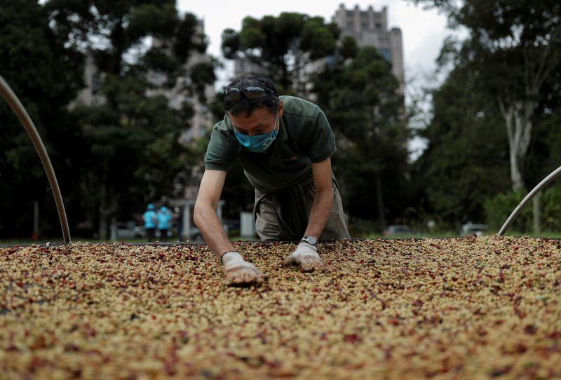 J Ganes vê safra de café do Brasil ainda menor e alerta para 2022