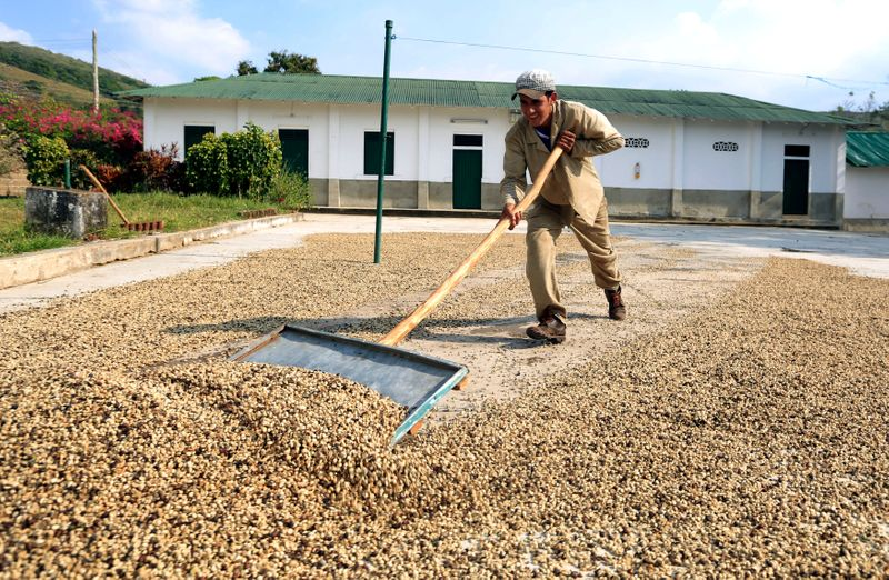 Exportações de café da Colômbia recuam 11% ante junho de 2020