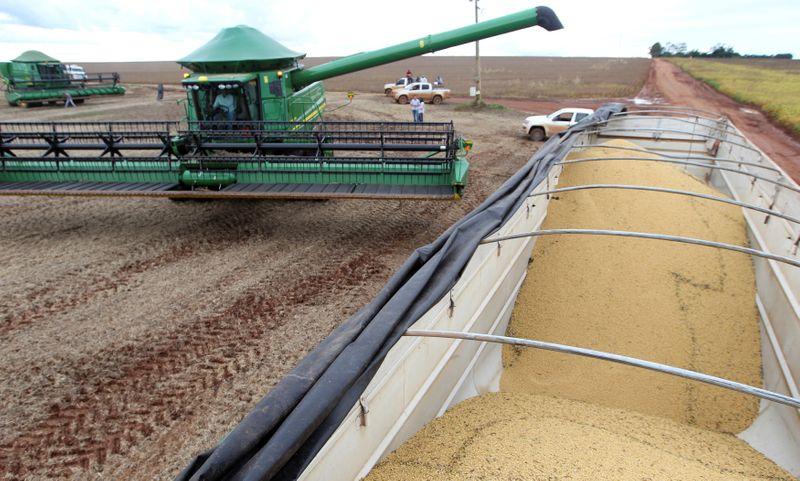 Produção de grãos do Brasil deve aumenar 27% em 10 anos, com impulso de soja