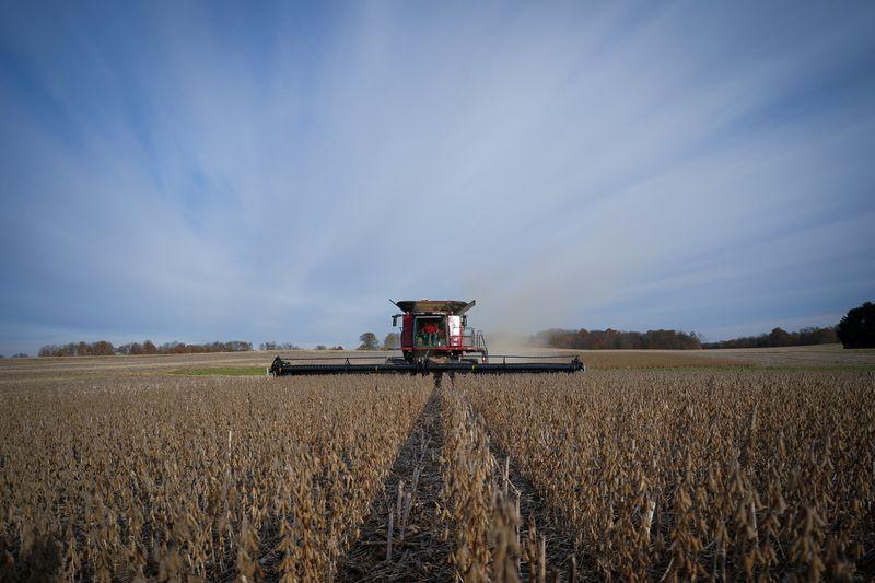 Preços da soja se recuperam em Chicago com recuo nas condições de safra dos EUA
