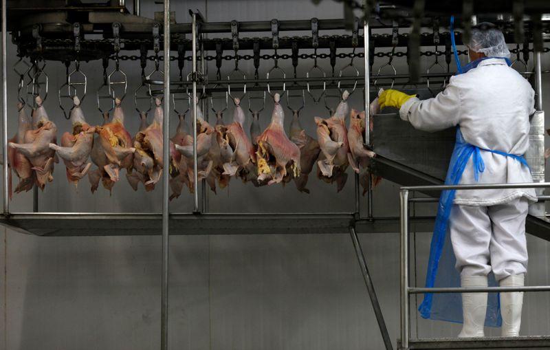 Exportação de frango do Brasil sobe 16% em junho com 'alta generalizada' entre compradores