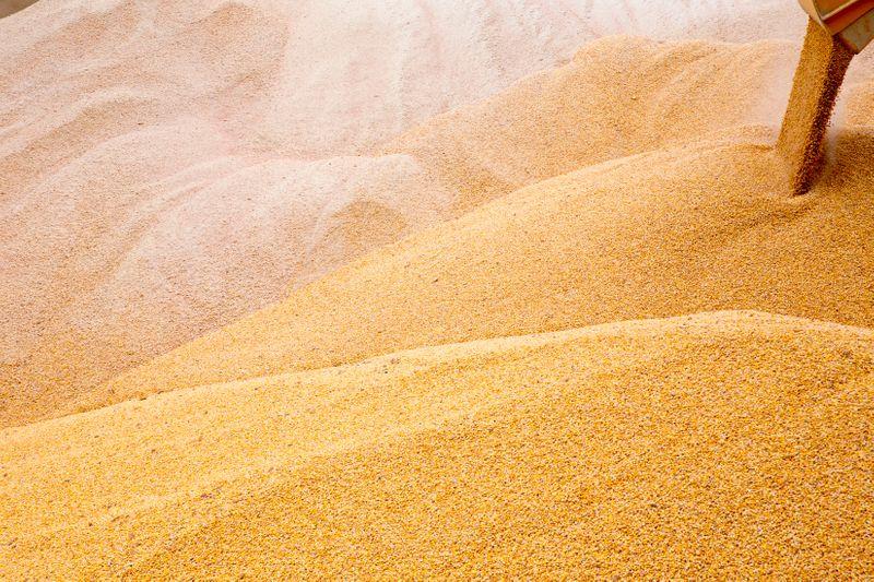 Exportação de grãos da Ucrânia tem salto no início da temporada 2021/22