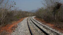 Ibama emite licença de instalação de Ferrovia de Integração Centro-Oeste