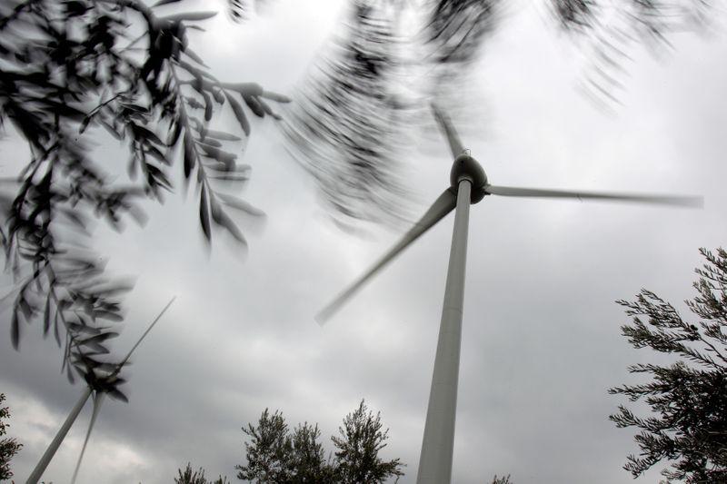 Empresa da Omega Energia tem aval do Cade para comprar projeto eólico junto a fundo