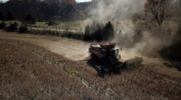 Chineses buscam cancelar compras de soja dos EUA em meio a menores margens