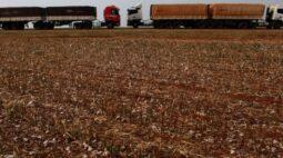 Três grupos vencem contratos de rodovias do Mato Grosso em leilão com pouca disputa