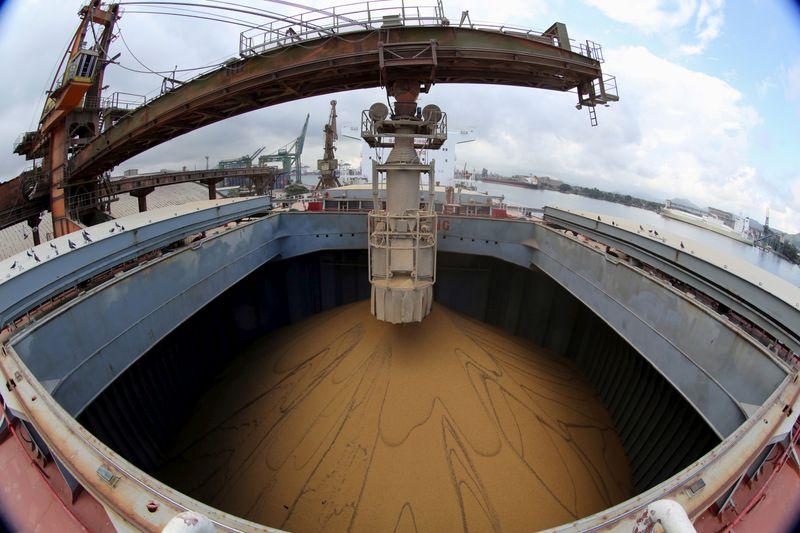 Anec diz que nenhum navio com soja deve deixar o Brasil no início de dezembro