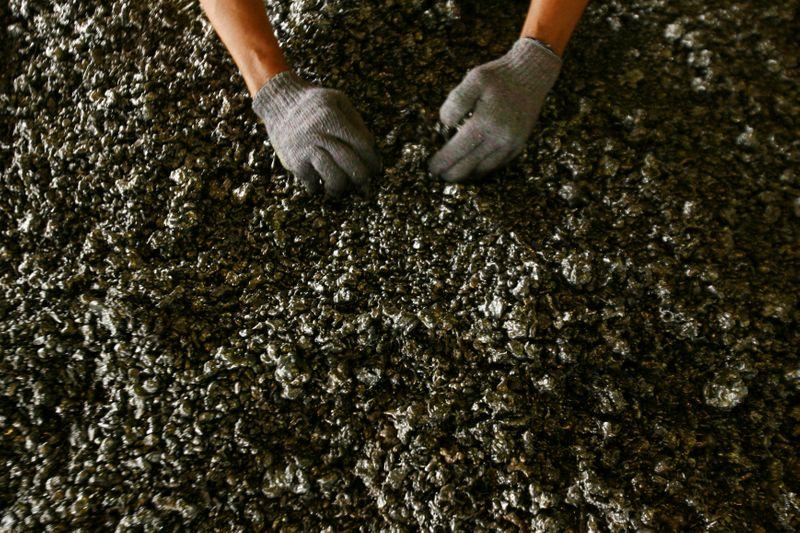 Horizonte Minerals obtém financiamento de US5 mi para projeto de níquel no Brasil