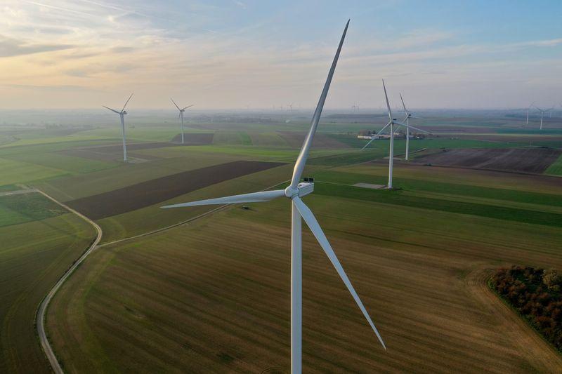 Empresa de renováveis Omega anuncia ex-consultor da PSR como diretor de Regulação