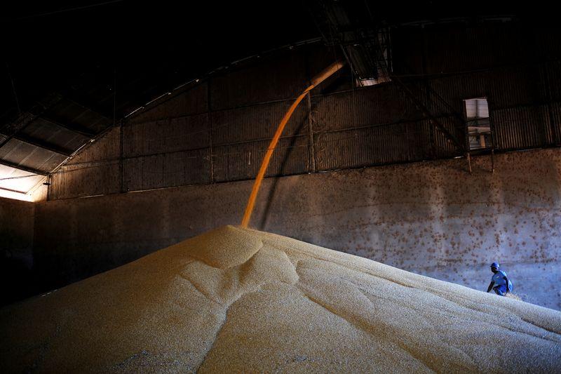 Imea reduz estimativa para safra de milho de Mato Grosso a 34,6 mi t; eleva soja