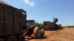 Alta de preços ao produtor acelera em junho no Brasil e tem recorde de 36,81% em 12 meses