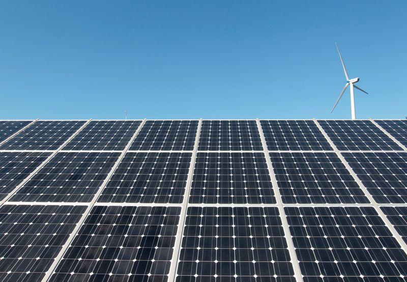 Omega Energia prevê construir usina de 240 MW para atender contrato com Bayer