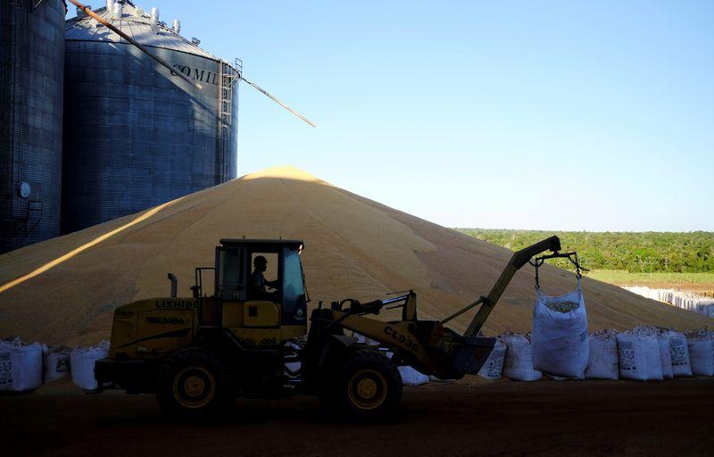 Abiove vê cenário desafiador para contratos de milho no Brasil com quebra de safra