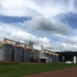 Usina de açúcar e etanol Batatais anuncia compra da Cevasa