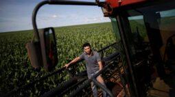 Previsões mudam e modelos passam a apontar risco de geada para parte do milho do Brasil