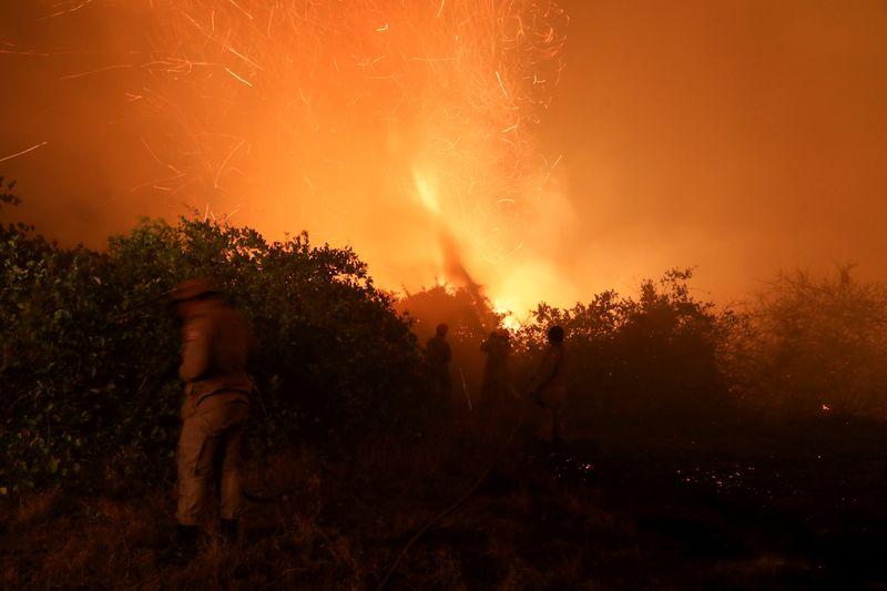 Com queimadas em alta, Pantanal pega fogo acima e abaixo da terra