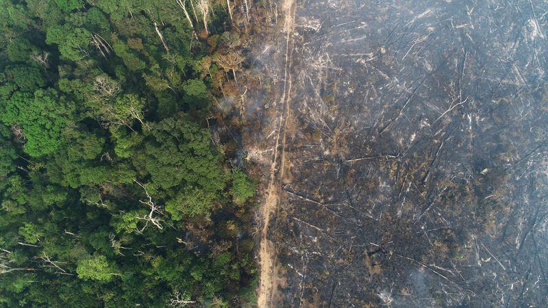 Congresso aprova crédito suplementar para combate a crimes ambientais na Amazônia