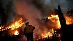 ONGs criticam Bolsonaro por negar crise ambiental em discurso na ONU