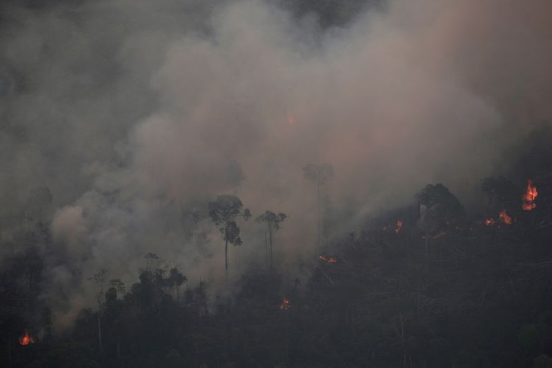 Bolsonaro autoriza ampliação de uso das Forças Armadas contra crimes ambientais no Amazonas