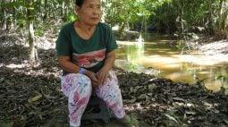 Funai renova ordem de proteção de povo indígena piripkura por 6 meses