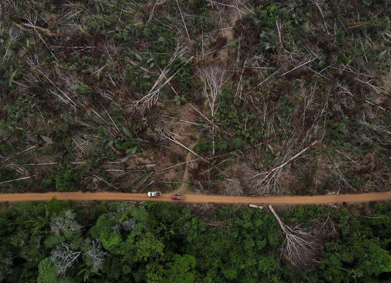 """Organizações farão apelo na ONU contra """"desmonte ambiental"""" por Bolsonaro"""