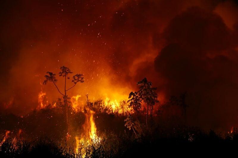 Cientistas alertam para piora de incêndios na Amazônia e Pantanal este ano