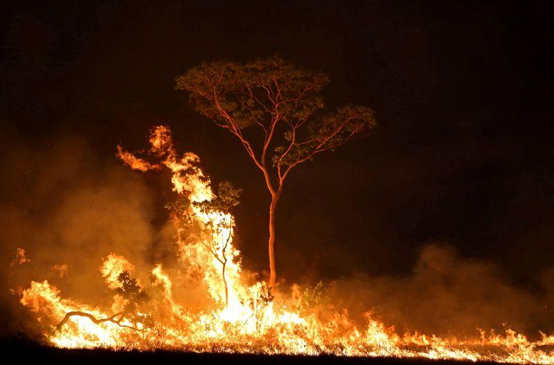 Governo proíbe queimadas legais por 120 dias e prorroga presença militar na Amazônia
