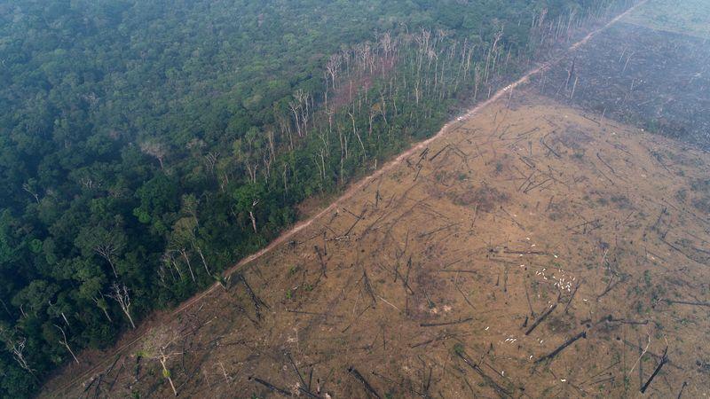 Brasil receberá até 25,5 mi euros de banco estatal alemão para Amazônia, diz governo