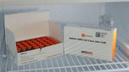 Veja como será a distribuição das primeiras doses de vacina contra a covid-19 no Paraná