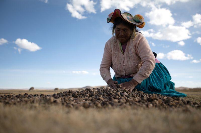 Indígenas do Peru esperam ter ao menos uma voz em governo de novo presidente