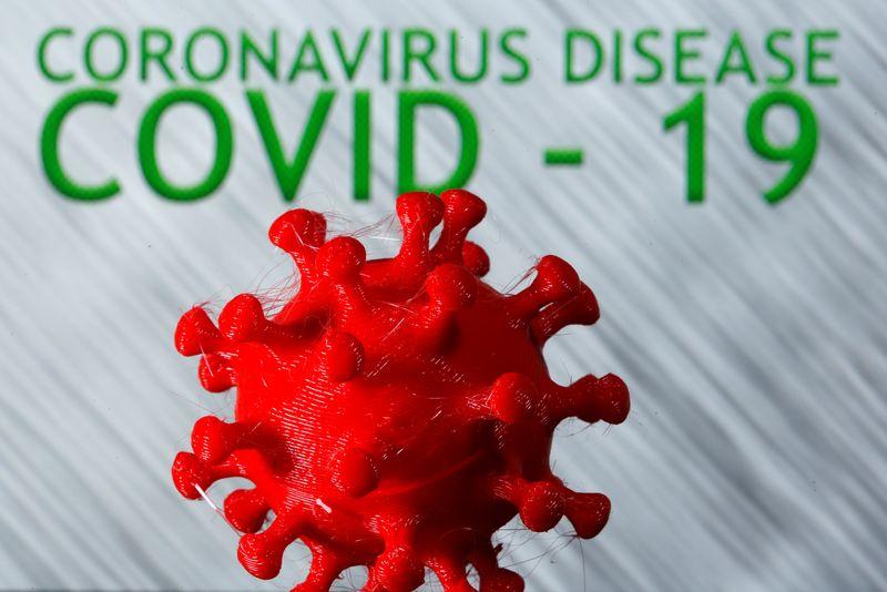 Protejam a natureza ou enfrentem pandemias mais graves do que a Covid-19, alertam cientistas