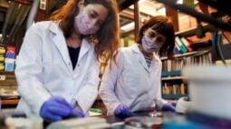 Mulheres cientistas da América Latina ganham poder, mas ainda existem obstáculos