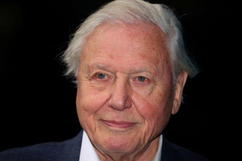 """Cada dia sem ação sobre clima é """"um dia perdido"""", diz naturalista David Attenborough"""
