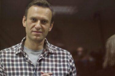 Especialistas de Direitos Humanos da ONU culpam Rússia por tentativa de matar ativista